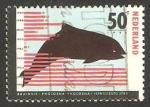 Stamps Netherlands -  1249 - Una marsopa