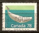 Sellos de America - Canadá -  La ballena Beluga.