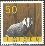 Stamps Poland -  TEJÒN