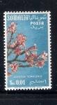 Sellos de Africa - Somalia -  Adenium somaliense