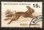 Sellos del Mundo : Europa : Rumania : Conejo europeo (Oryctolagus cuniculus).