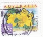Stamps : Oceania : Australia :  FLORES- HIBBERTIA