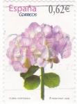 Stamps Spain -  FLORA- Hortensia    (7)