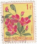 Stamps : Africa : Democratic_Republic_of_the_Congo :  Flores- Hibiscus