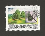 Sellos de Asia - Mongolia -  Pino siberiano