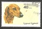 Stamps : Africa : Morocco :  Perro de raza