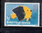 Stamps America - Virgin Islands -  Pez ángel bicolor (Holacanthus tricolor)