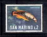 Sellos del Mundo : Europa : San_Marino : Lavro pavone (Pez pavo real)