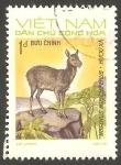 Stamps : Asia : Vietnam :   793 - Animal salvaje, moschus moschiferus