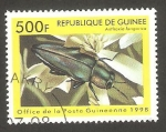 Stamps : Africa : Guinea :  Anthaxia lungarica