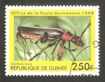 Stamps : Africa : Guinea :  Cantharis fusca