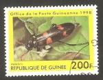 Sellos de Africa - Guinea -  Mylabris
