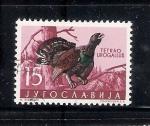 Sellos de Europa - Yugoslavia -  Urogallo: Tetrao urogallus