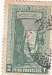 Stamps Turkey -  Desfiladero