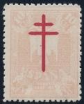 Sellos de Europa - España -  ESPAÑA 957 PRO TUBERCULOSOS 1942
