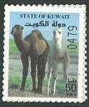 Sellos del Mundo : Asia : Kuwait :  Camellos