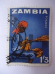 Stamps of the world : Zambia :  Tobacco