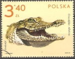 Sellos de Europa - Polonia -  COCODYLUS  NILOTICUS