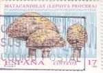 Stamps Spain -  SETAS- MATACANDELAS (9)