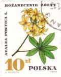 Sellos del Mundo : Europa : Polonia : FLOR- AZALEA PONTICA