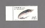 Stamps Asia - China -  FAUNA  Peces ESTURION Caluga