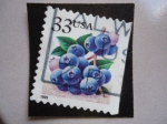 Stamps United States -  USA