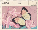 Stamps Cuba -  Mariposas