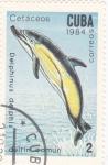 Sellos de America - Cuba -  Cetáceos- delfín común
