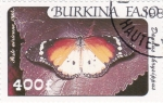 Stamps Burkina Faso -  MARIPOSA