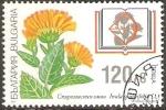 Stamps Bulgaria -  FLORES.  INULA  SPIRAEIFOLIA.