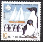 Sellos de Europa - Polonia -  Pinguinos Adeli