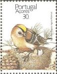 Stamps Portugal -  AVES.  REYEZUELO  SOBRE NIDO.