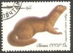Sellos del Mundo : Europa : Rusia :  4708 - Fauna