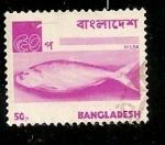 Stamps Asia - Bangladesh -  Pez