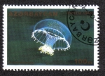 Stamps Azerbaijan -  Orchistoma Pileus