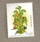 Stamps Portugal -  Flores