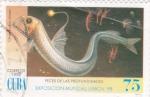 Sellos de America - Cuba -  Peces de las profundidades