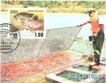Stamps Cuba -  ACUICULTURA