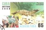Sellos de America - Cuba -  PENAEUS  VANNMEL