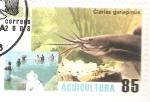 Stamps Cuba -  CLARIAS  GARIEPINUS