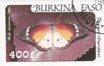 Sellos de Africa - Burkina Faso -  Mariposa- Daugus chysippus
