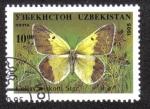Sellos de Asia - Uzbekistán -  Colias Wiskotti Stgr