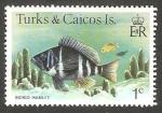 Sellos del Mundo : America : Islas_Turcas_y_Caicos : Pez