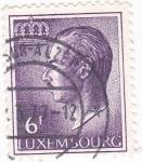 Sellos de Europa - Luxemburgo -  GRAN DUQUE JUAN