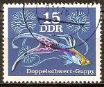 Sellos de Europa - Alemania -  Peces ornamentales-Guppy espada doble(DDR).