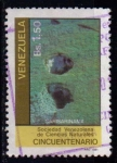 Sellos de America - Venezuela -  Sociedad Venezolana de Ciencias Naturales