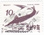 Stamps North Korea -  ACIPENSER MIKADOI