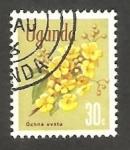 Stamps : Africa : Uganda :  Flor ochna ovata