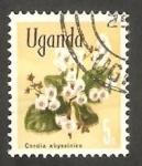Stamps : Africa : Uganda :  Flor cordia abyssinica