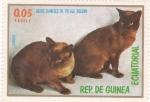 Sellos de Africa - Guinea Ecuatorial -  GATOS SIAMESES